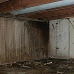 Crawlspace Mold KS