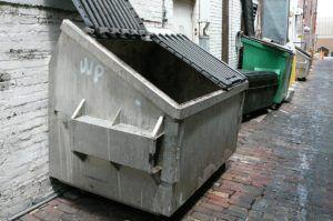 Dumpster in ally